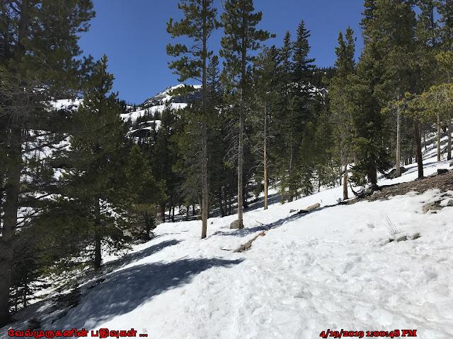 Bear Lake Natural Loop Trail