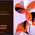 Download Adobe Illustrator - Phần mềm thiết kế đồ họa vector bản mới nhất