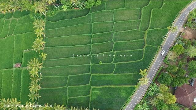 Desa Tamansari juara 1 Trisakti Tourism Award 2021 kategori Desa Wisata Alam