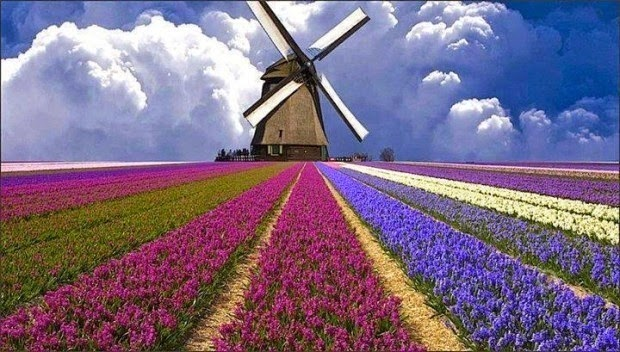 #2. A field of flowers in Holland. - 19 Secret Travel Destinations You Never Knew Existed… Almost Nobody Knows About #17.