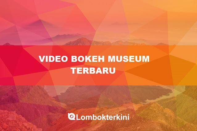 Video Bokeh Museum Sexxxxyyyy Bokeh 18 ++ Se 2021