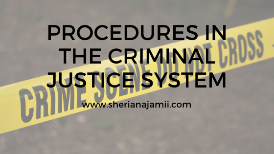 PROCEDURES IN THE CRIMINAL JUSTICE SYSTEM