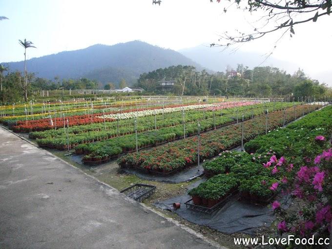 宜蘭冬山-仁山植物園-歐式花園免費參觀 一覽蘭陽平原美景-ren shan zhi wu yuan