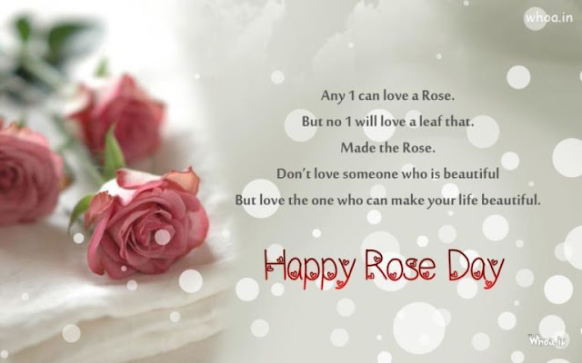 Rose Day HD Images HD Free