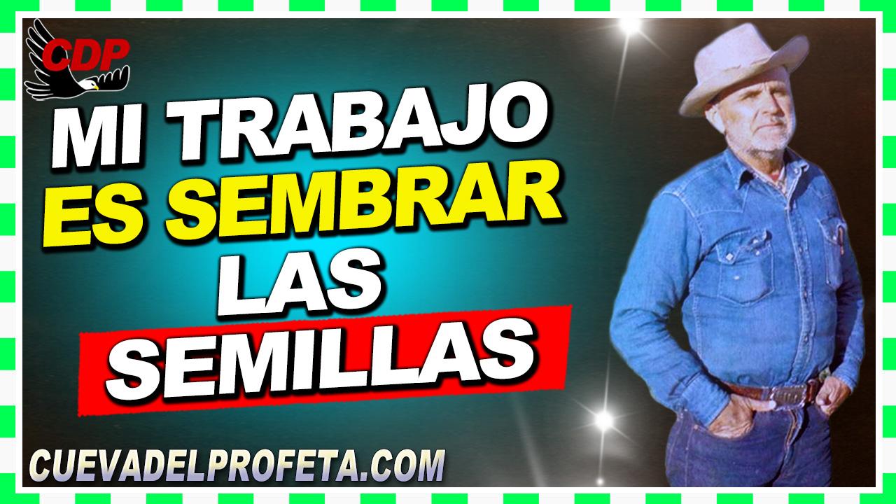 Mi trabajo es sembrar las semillas - William Branham en Español