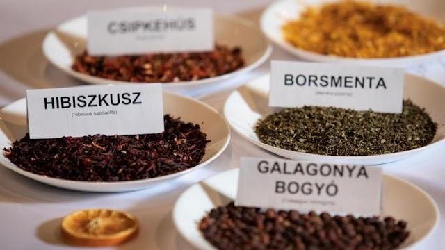 Így készítsünk teát, ha a hideg napokon egy kis forróságra vágyunk