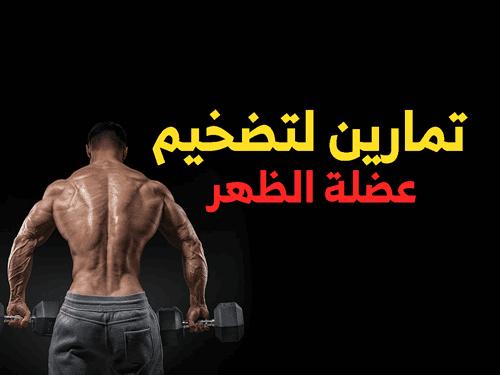 تمارين عضلة الظهر