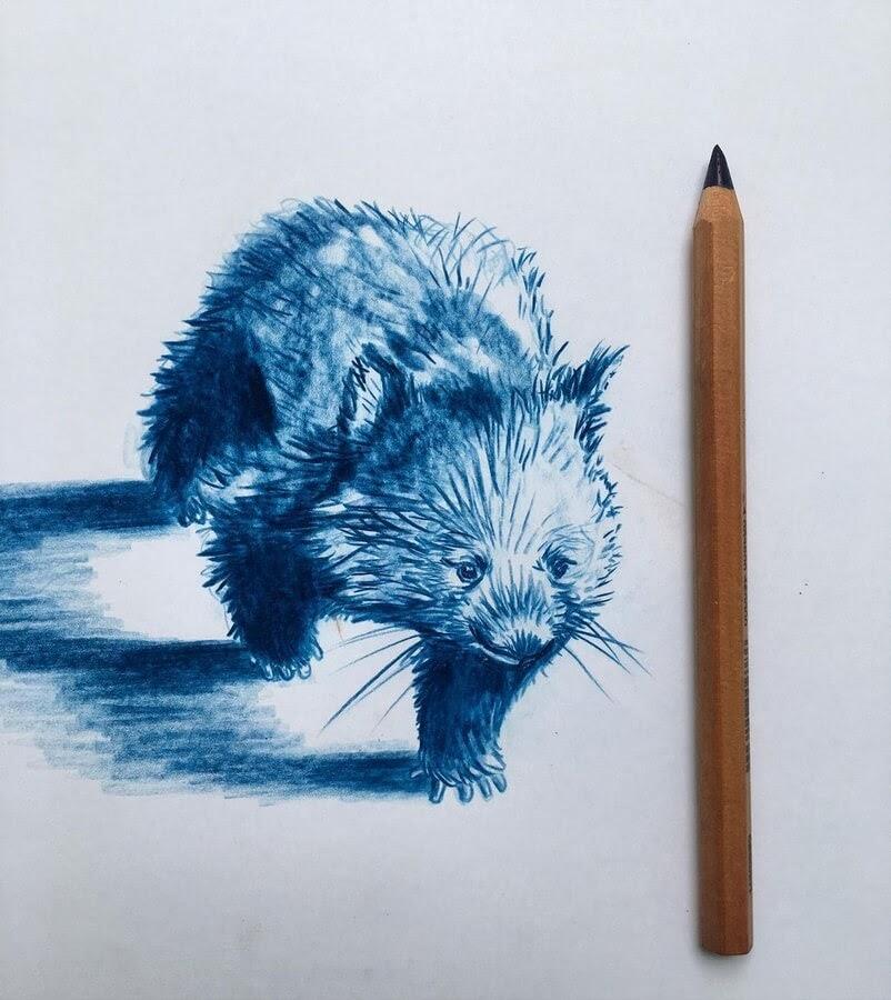 02-Little-wombat-Farbe-Und-Fabeln-www-designstack-co