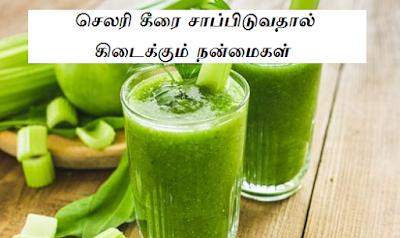 celery benefits in tamil