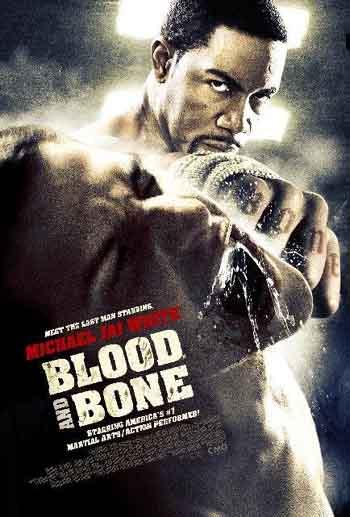 Blood and Bone 2009 480p 300MB BRRip Dual Audio [Hindi - English]
