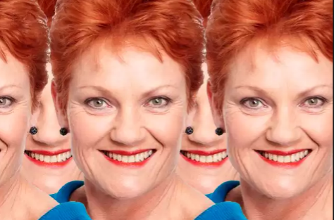 """PAULINE HANSON TO ASK AUSTRALIAN SENATE TO ACKNOWLEDGE THAT """"IT IS OKAY TO BE WHITE"""""""