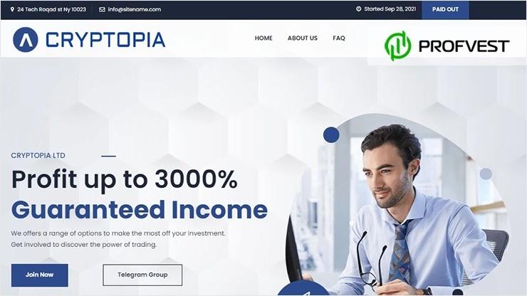 Cryptopia обзор и отзывы проекта