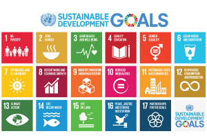 WHY THE SUSTAINABLE DEVELOPMENT GOALS (SDG) MAY FAIL IN AFRICA