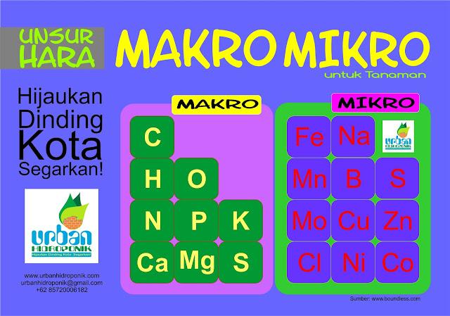 pelatihan hidroponik, urban farming indonesia, urban hidroponik,