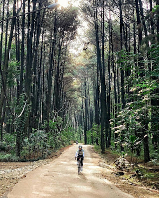 Wisata Alam Gunung Pancar Sentul Bogor