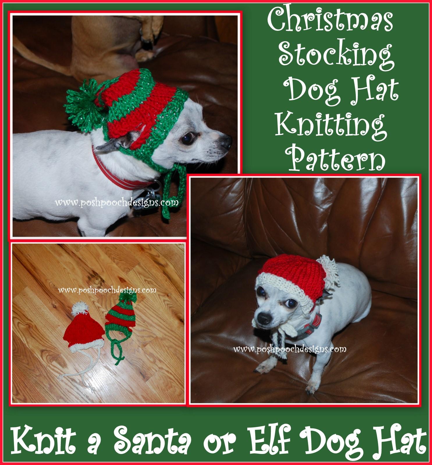 Posh pooch designs dog clothes dog hat knitting patterns - Dog hat knitting pattern free ...