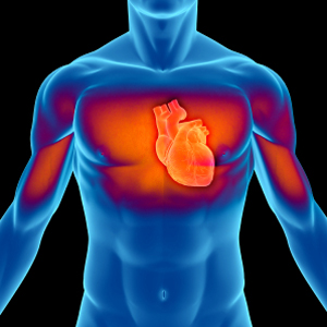 Rumored Buzz on Cardiovascular
