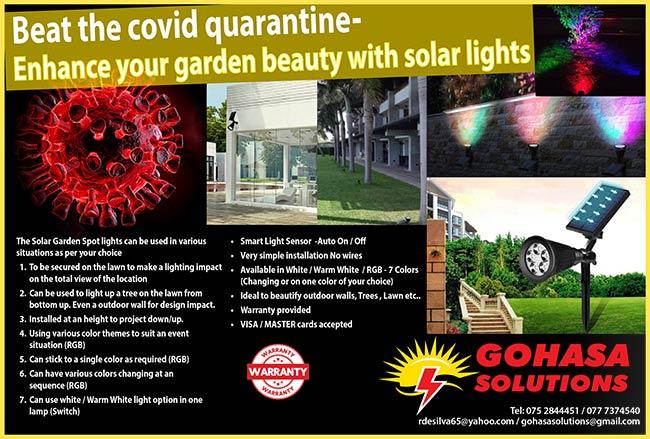 Enhance your garden beauty with Solar Lights.