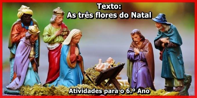As três flores do Natal - Atividades de Língua Portuguesa para o 6.º Ano