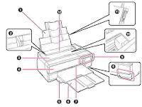 Epson Manual User Guide PDF
