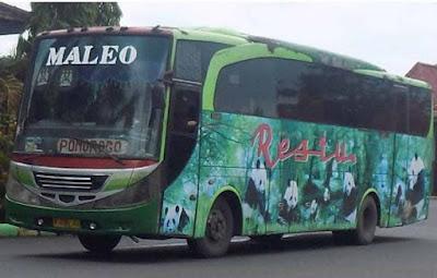 Tarif Bus Surabaya Jember