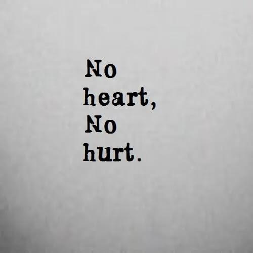No heart no hurt DP for girls