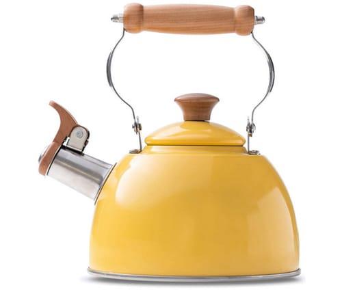 ROCKURWOK Stainless Steel Tea Kettle Stovetop