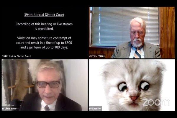 فيلتر على منصة Zoom يحول محامي إلى قط و يثير عاصفة من السخرية على مواقع التواصل