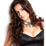 Amisha Patel top 10 hottest wallpapers forever.!