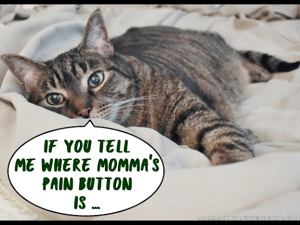 The pain button