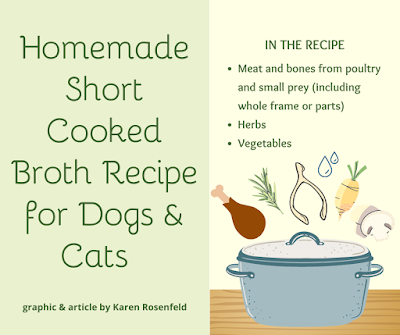 Homemade short cooked broth recipe for dogs and cats