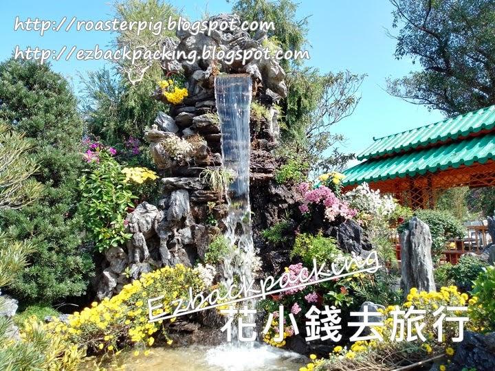 香港菊花展
