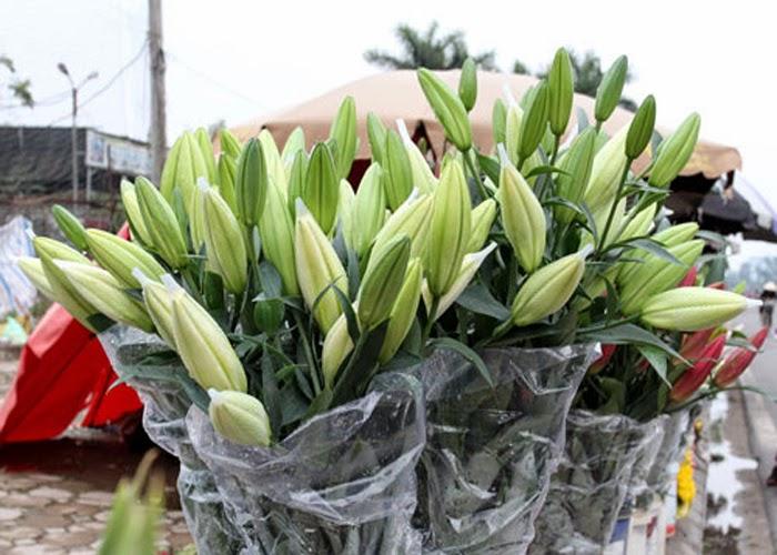 Những Đóa Hoa Thường Cắm Trong Gia Đình Ngày Tết 5