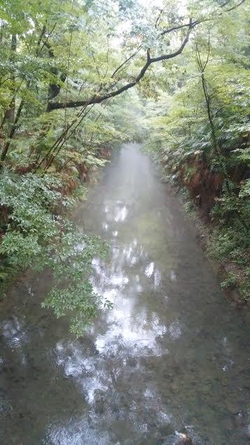 かに坂公園手前の玉川上水