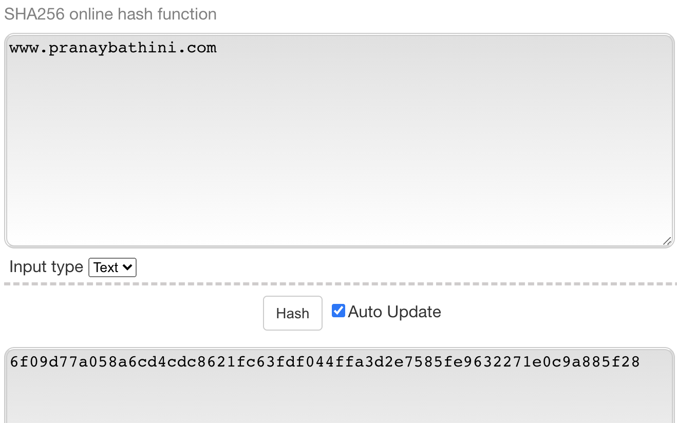 SHA256 Online Hash Generator