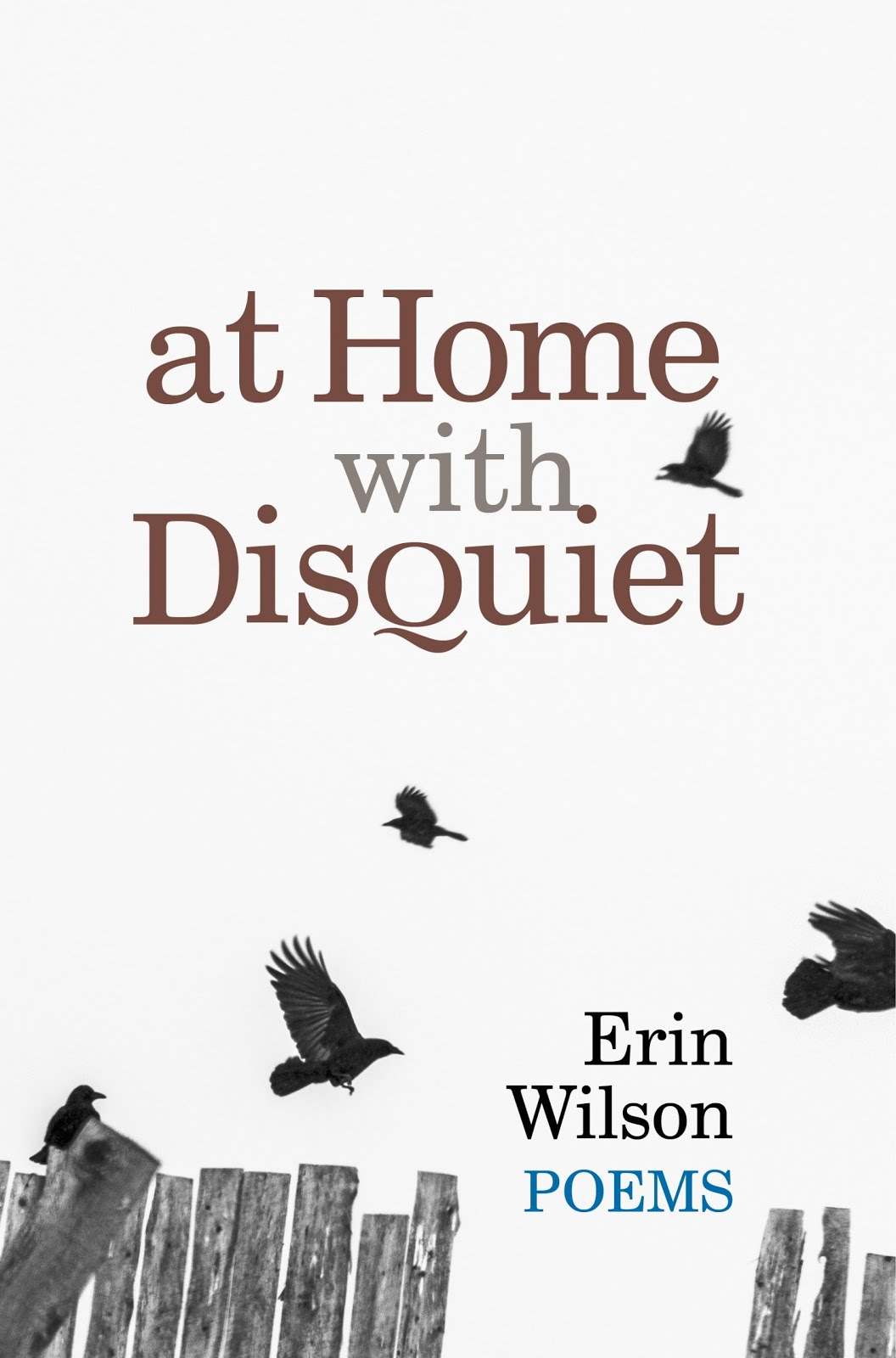 https://www.amazon.com/At-Home-Disquiet-Erin-Wilson/dp/1939530105/ref=sr_1_1?keywords=at+home+with+disquiet&qid=1581772339&sr=8-1