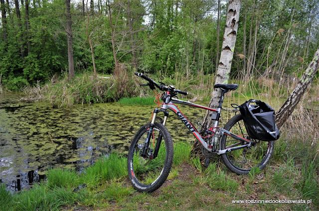 Trupi Lasek (Las Krzyszkowicki) rowerem- Kraków z dziećmi