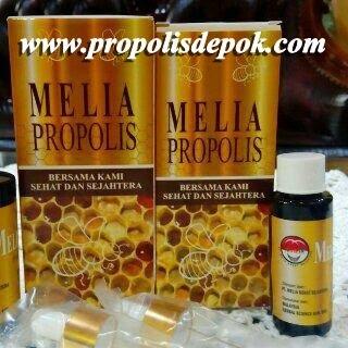 melia propolis mss kemasan 55ml termurah original sehat sejahtera