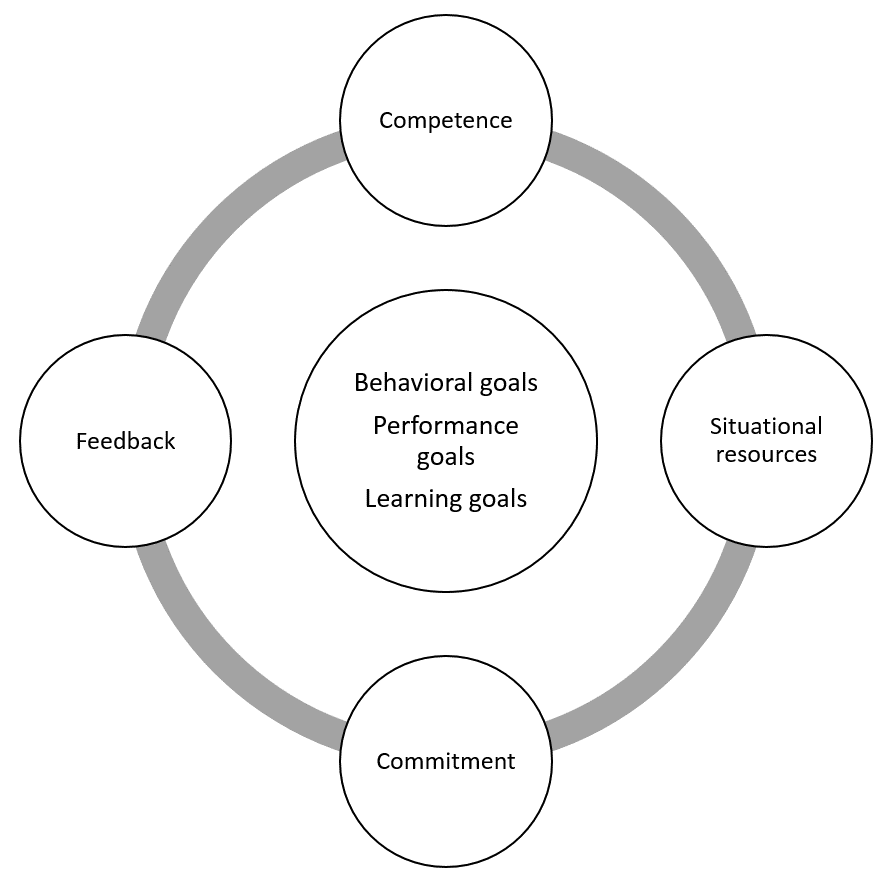 The Progress-Focused Approach: Which types of goals when?