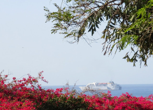 a ship among the flowers and plants