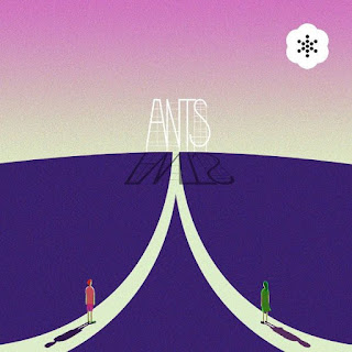Ants - Don't Fight Lyrics
