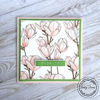 Rachel Vass Designs - Magnolia Background