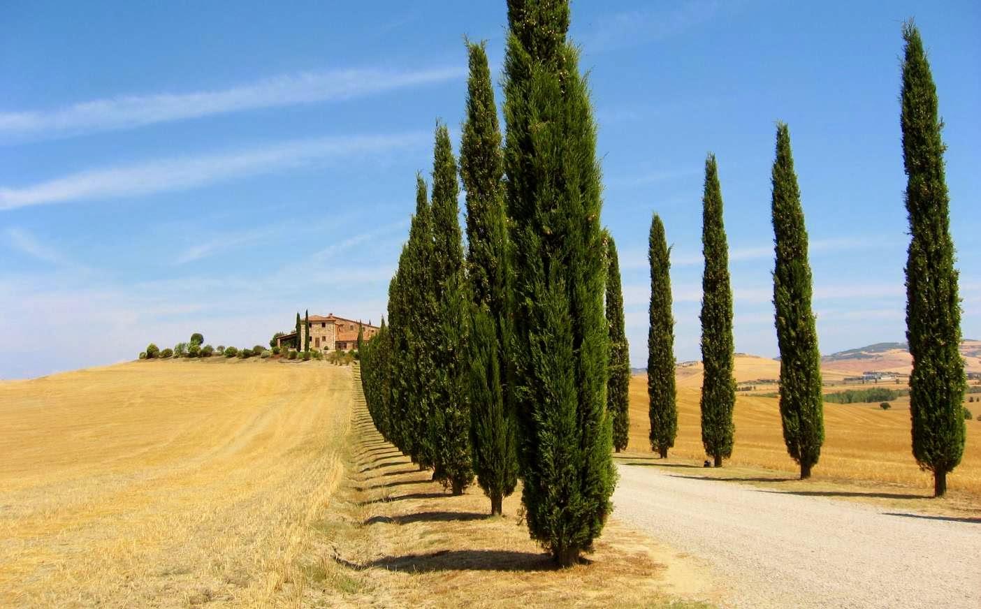 Defensa judicial de la propiedad romana