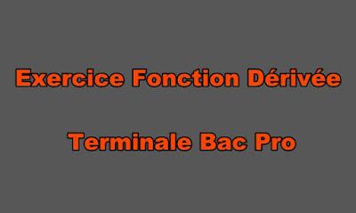 Exercice Fonction Dérivée Terminale Bac Pro Avec Corrigé