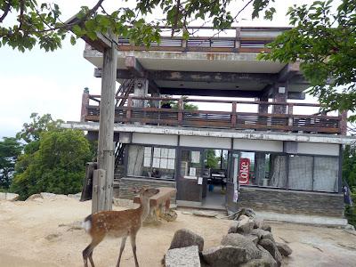宮島の弥山頂上の展望台