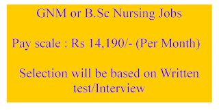 GNM or B.Sc Nursing Jobs in Office of the district medical  health officer Mahabubabad