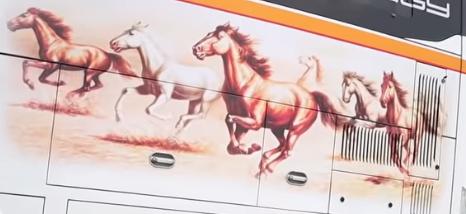 kuda orange dari tulungagung