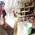 4-Year-Old Girl Killed & Her Blood Sprinkled On Shrine In Ogun [Photos]