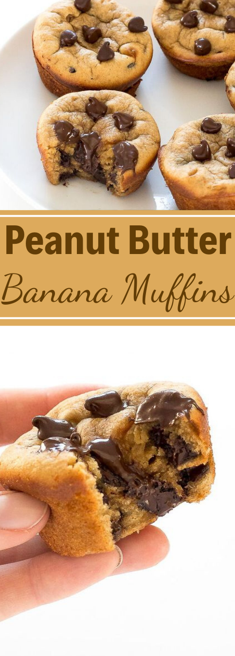 Flourless Peanut Butter Banana Muffins #diet #desserts #peanut #paleo #snack