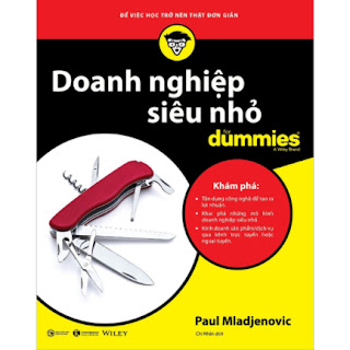 Doanh Nghiệp Siêu Nhỏ (for Dummies) ebook PDF EPUB AWZ3 PRC MOBI